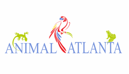 Animal Atlanta Logo