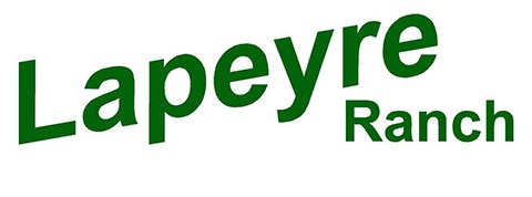 Lapeyre Ranch - Horse Boarding Facility Logo