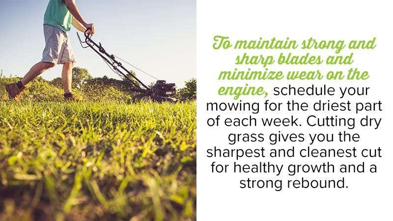 To maintain strong and sharp blades and minimize wear on the engine, schedule your mowing for the driest part of each week. Cutting dry grass gives you the sharpest and cleanest cut for healthy growth and a strong rebound.