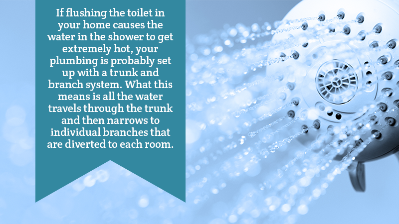 If flushing the toilet in your home causes the water in the shower to get extremely hot, your plumbing is probably set up with a trunk and branch system. What this means is all the water travels through the trunk and then narrows to individual branches that are diverted to each room.