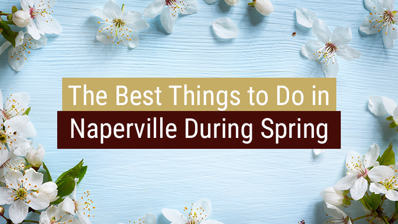 The Best Things to Do in Naperville During Spring