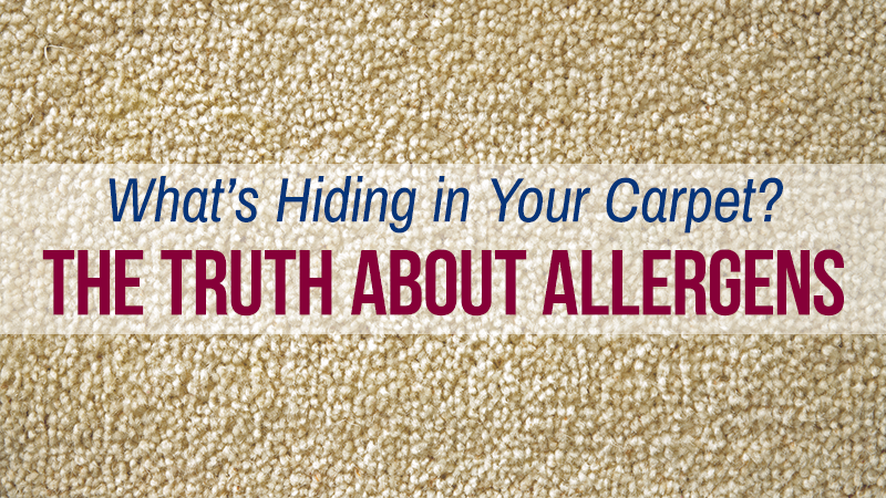 What's Hiding in Your Carpet? The Truth About Allergens