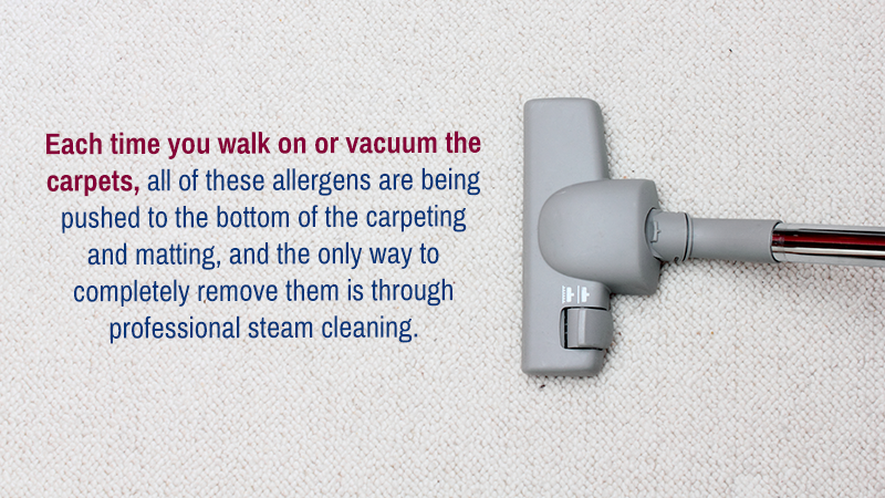 Each time you walk on or vacuum the carpets, all of these allergens are being pushed to the bottom of the carpeting and matting, and the only way to completely remove them is through professional steam cleaning.