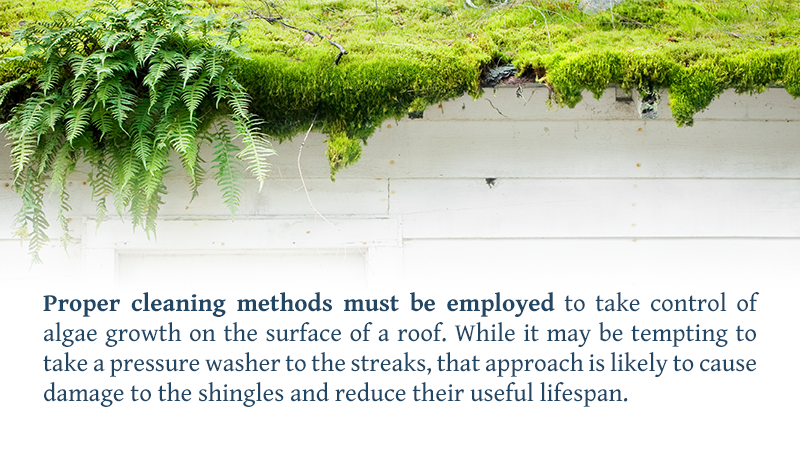 Proper cleaning methods must be employed to take control of algae growth on the surface of a roof. While it may be tempting to take a pressure washer to the streaks, that approach is likely to cause damage to the shingles and reduce their useful lifespan.