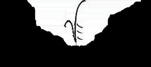 Visual Expressions Logo