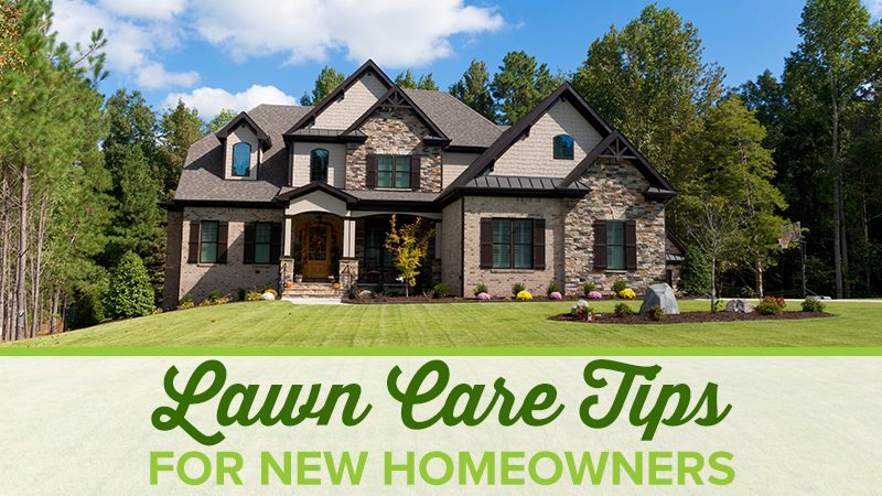 Lawn Care Tips for New Homeowners