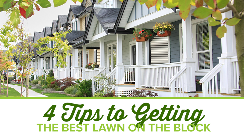 4 Tips to Getting the Best Lawn on the Block