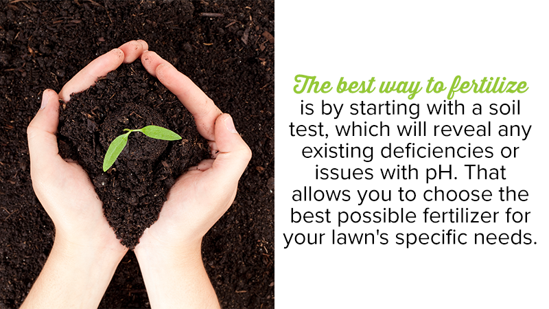 The best way to fertilize is by starting with a soil test, which will reveal any existing deficiencies or issues with pH. That allows you to choose the best possible fertilizer for your lawn's specific needs.