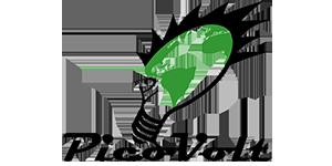 PicoVolt Logo