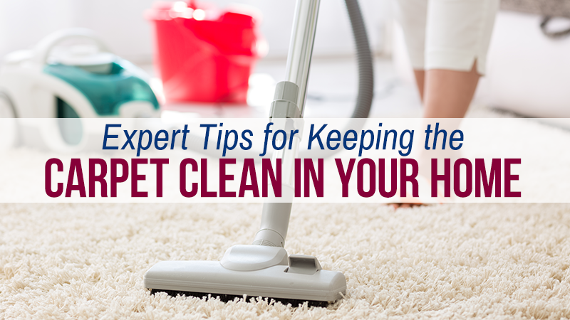 Expert Tips for Keeping the Carpet Clean in Your Home