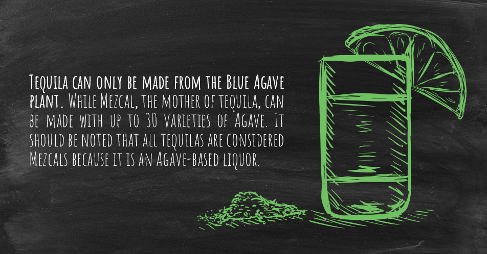 Tequila can only be made from the Blue Agave plant. While Mezcal, the mother of tequila, can be made with up to 30 varieties of Agave. It should be noted that all tequilas are considered Mezcals because it is an Agave-based liquor.