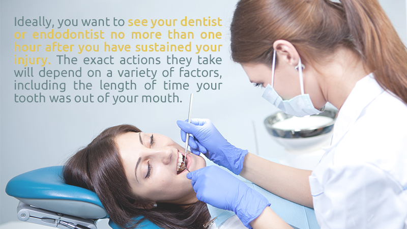 Ideally, you want to see your dentist or endodontist no more than one hour after you have sustained your injury. The exact actions they take will depend on a variety of factors, including the length of time your tooth was out of your mouth.