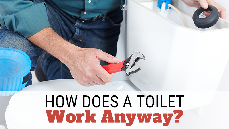 How Does a Toilet Work Anyway?