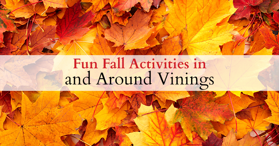 Fun Fall Activities in and Around Vinings