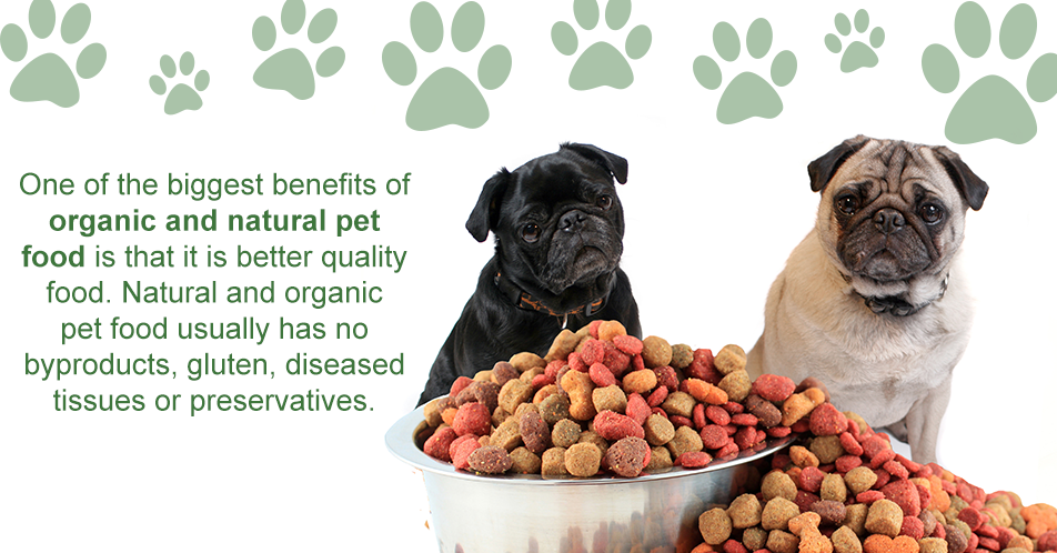 One of the biggest benefits of organic and natural pet food is that it is better quality food. Natural and organic pet food usually has no byproducts, gluten, diseased tissues or preservatives.
