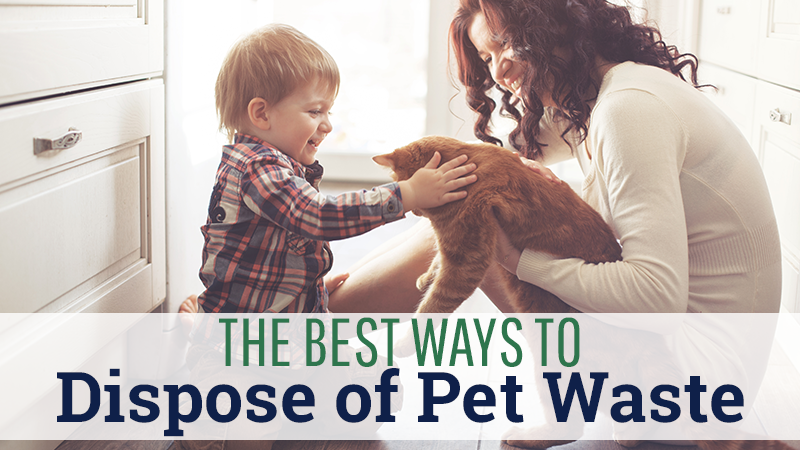 The Best Ways to Dispose of Pet Waste