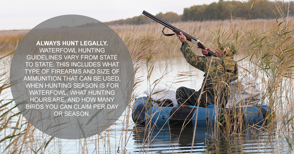Always hunt legally. Waterfowl hunting guidelines vary from state to state. This includes what type of firearms and size of ammunition that can be used, when hunting season is for waterfowl, what hunting hours are, and how many birds you can claim per day or season.
