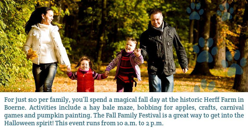For just $10 per family, you'll spend a magical fall day at the historic Herff Farm in Boerne. Activities include a hay bale maze, bobbing for apples, crafts, carnival games and pumpkin painting.The Fall Family Festival is a great way to get into the Halloween spirit! This event runs from 10 a.m. to 2 p.m.