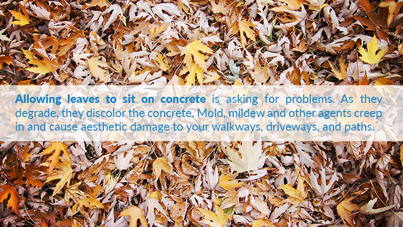 Allowing leaves to sit on concrete is asking for problems. As they degrade, they discolor the concrete. Mold, mildew and other agents creep in and cause aesthetic damage to your walkways, driveways, and paths.
