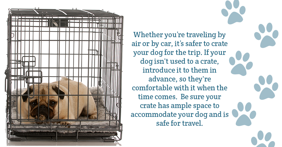 Whether you're traveling by air or by car, it's safer to crate your dog for the trip. If your dog isn't used to a crate, introduce it to them in advance, so they're comfortable with it when the time comes.  Be sure your crate has ample space to accommodate your dog and is safe for travel.