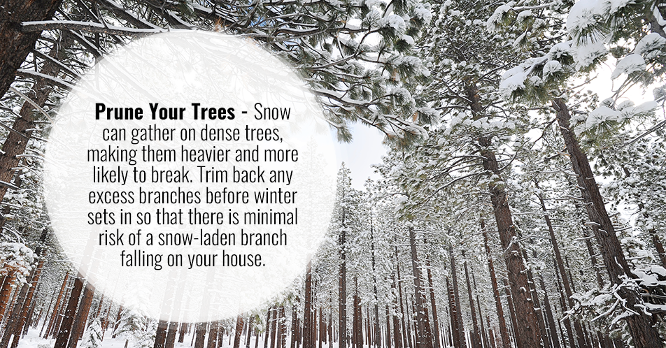 Prune Your Trees - Snow can gather on dense trees, making them heavier and more likely to break. Trim back any excess branches before winter sets in so that there is minimal risk of a snow-laden branch falling on your house.