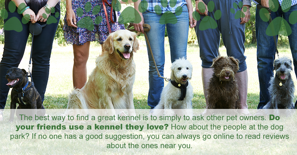 The best way to find a great kennel is to simply to ask other pet owners. Do your friends use a kennel they love? How about the people at the dog park? If no one has a good suggestion, you can always go online to read reviews about the ones near you.