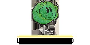 Lettuce Organize, LLC Logo