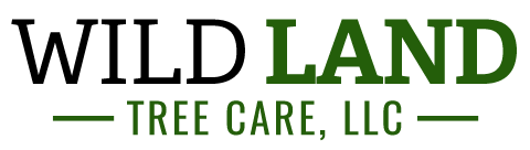 Wild Land Tree Care Logo