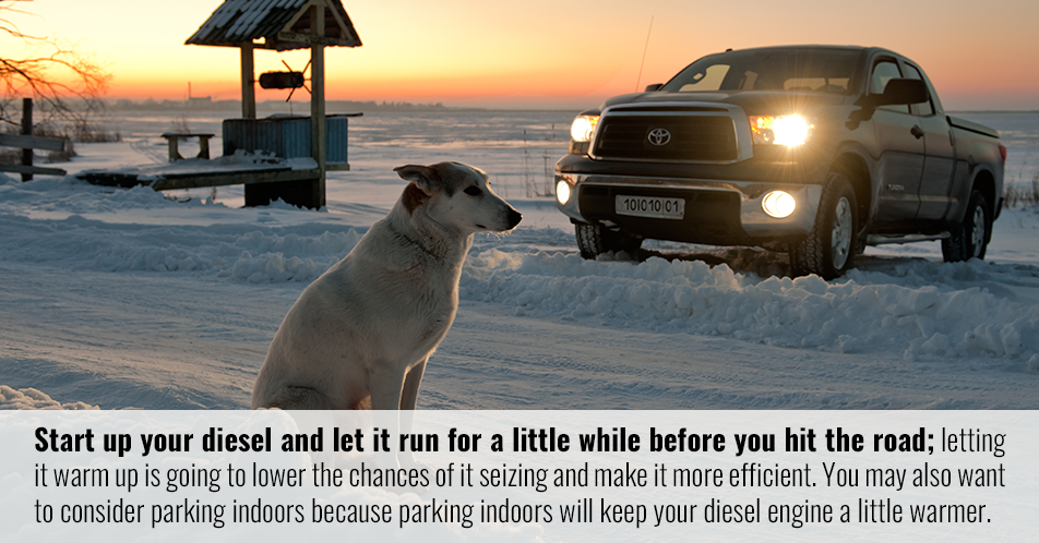 Start up your diesel and let it run for a little while before you hit the road; letting it warm up is going to lower the chances of it seizing and make it more efficient. You may also want to consider parking indoors because parking indoors will keep your diesel engine a little warmer.