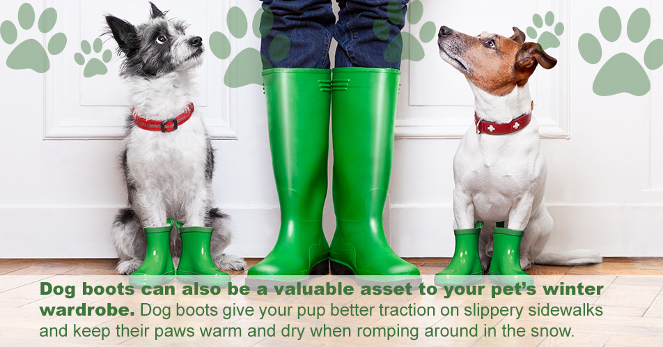 Dog boots can also be a valuable asset to your pet's winter wardrobe. Dog boots give your pup better traction on slippery sidewalks and keep their paws warm and dry when romping around in the snow.