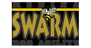 Medina Swarm Agility Logo