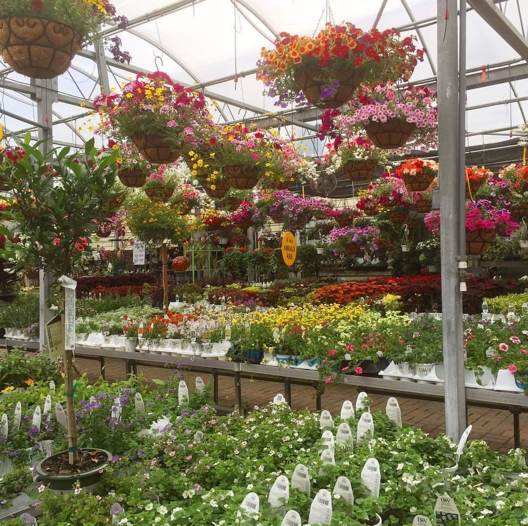 Garden Center Westerville Ohio | Garden Center Near Me | Hoover ...