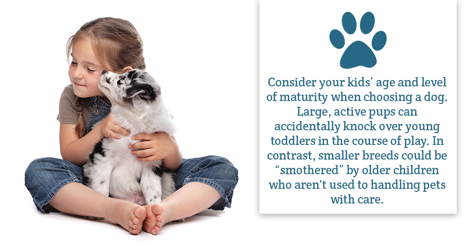 "Consider your kids' age and level of maturity when choosing a dog. Large, active pups can accidentally knock over young toddlers in the course of play. In contrast, smaller breeds could be ""smothered"" by older children who aren't used to handling pets with care."