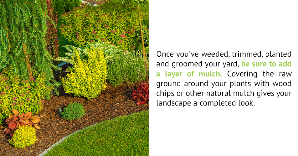 Once you've weeded, trimmed, planted and groomed your yard, be sure to add a layer of mulch. Covering the raw ground around your plants with wood chips or other natural mulch gives your landscape a completed look.