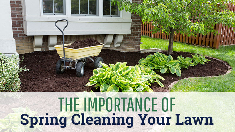 The Importance of Spring Cleaning Your Lawn