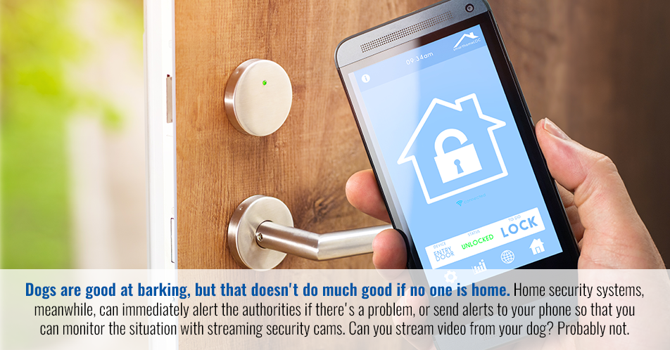 Dogs are good at barking, but that doesn't do much good if no one is home. Home security systems, meanwhile, can immediately alert the authorities if there's a problem, or send alerts to your phone so that you can monitor the situation with streaming security cams. Can you stream video from your dog? Probably not.