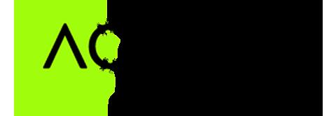 Ageint Security Logo