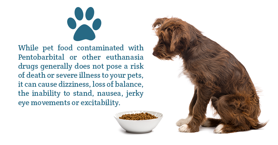 While pet food contaminated with Pentobarbital or other euthanasia drugs generally does not pose a risk of death or severe illness to your pets, it can cause dizziness, loss of balance, the inability to stand, nausea, jerky eye movements or excitability.