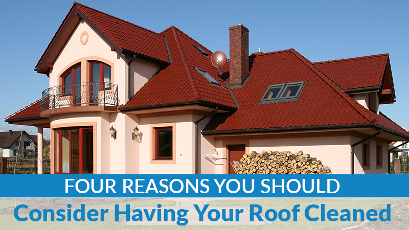 Four Reasons You Should Consider Having Your Roof Cleaned