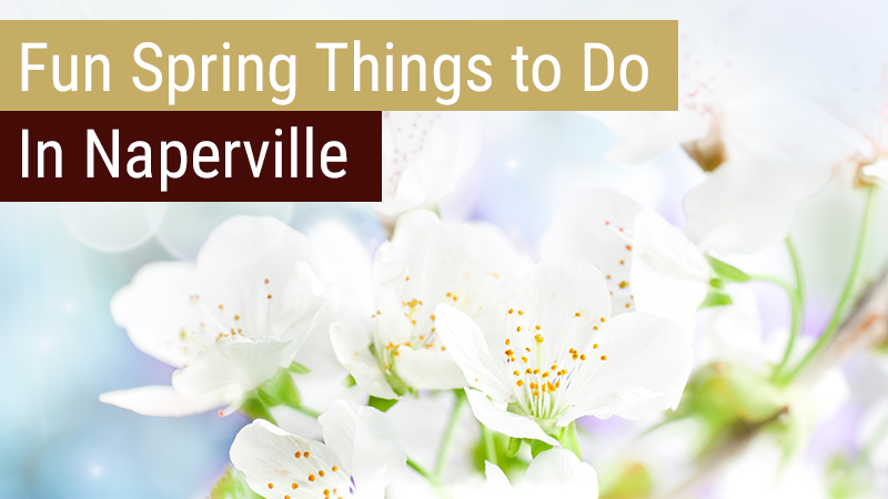 Fun Spring Things to Do In Naperville