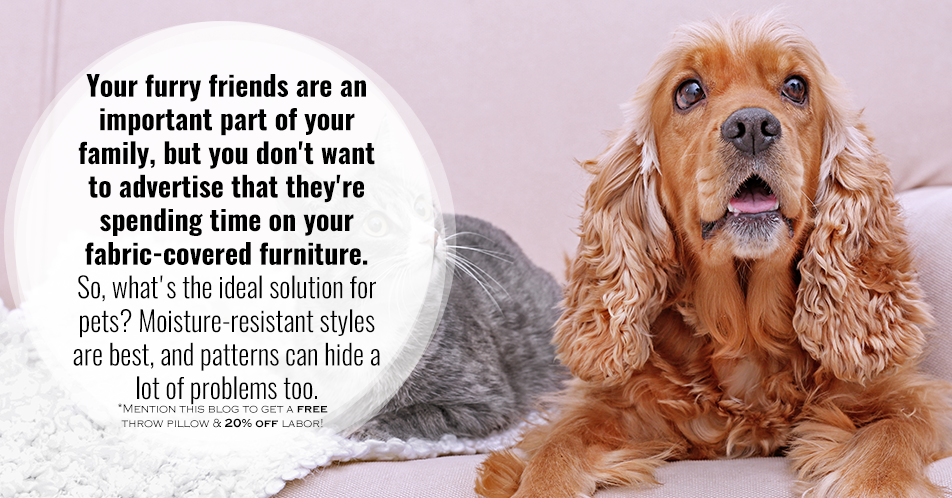 Your furry friends are an important part of your family, but you don't want to advertise that they're spending time on your fabric-covered furniture. So, what's the ideal solution for pets? Moisture-resistant styles are best, and patterns can hide a lot of problems too.