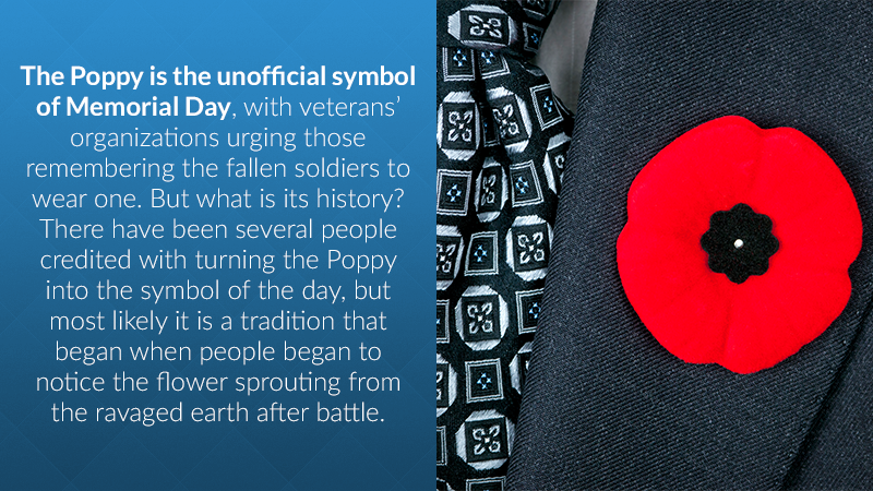 The Poppy is the unofficial symbol of Memorial Day, with veterans' organizations urging those remembering the fallen soldiers to wear one. But what is its history? There have been several people credited with turning the Poppy into the symbol of the day, but most likely it is a tradition that began when people began to notice the flower sprouting from the ravaged earth after battle.