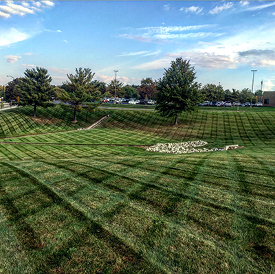 Lawn Care Services In Mount Vernon Oh Lawn Care Store