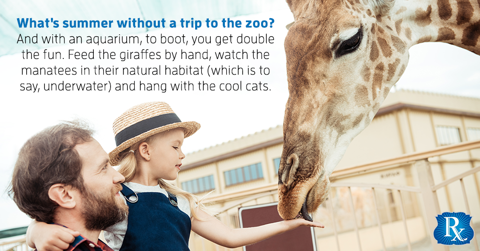 What's summer without a trip to the zoo? And with an aquarium, to boot, you get double the fun. Feed the giraffes by hand, watch the manatees in their natural habitat (which is to say, underwater) and hang with the cool cats.