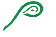 Parmer Eye Care Logo