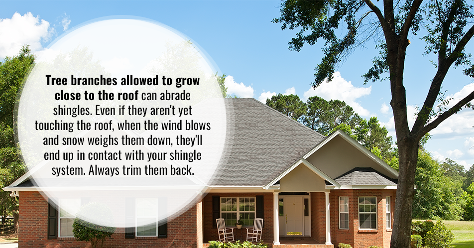 Tree branches allowed to grow close to the roof can abrade shingles. Even if they aren't yet touching the roof, when the wind blows and snow weighs them down, they'll end up in contact with your shingle system. Always trim them back.