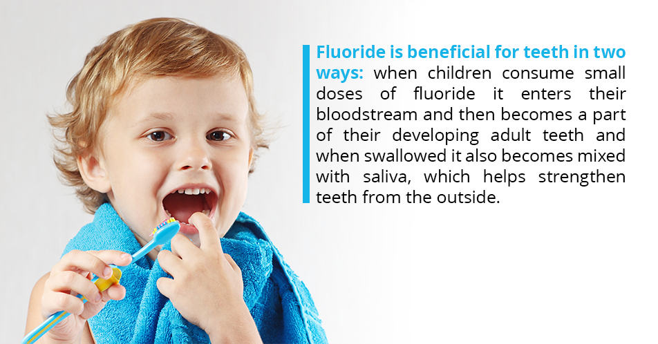 Fluoride is beneficial for teeth in two ways: when children consume small doses of fluoride it enters their bloodstream and then becomes a part of their developing adult teeth and when swallowed it also becomes mixed with saliva, which helps strengthen teeth from the outside.