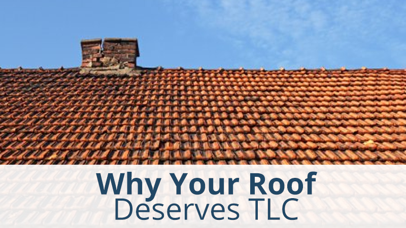 Why Your Roof Deserves TLC