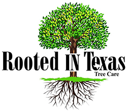 Rooted In Texas Tree Care Logo