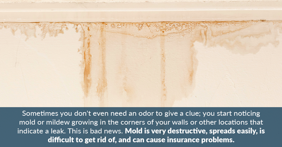 Sometimes you don't even need an odor to give a clue; you start noticing mold or mildew growing in the corners of your walls or other locations that indicate a leak. This is bad news. Mold is very destructive, spreads easily, is difficult to get rid of, and can cause insurance problems.